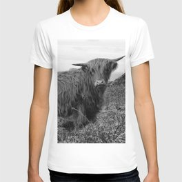Highland cow II T-shirt