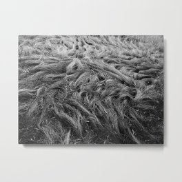 Bedding Behaviour Metal Print