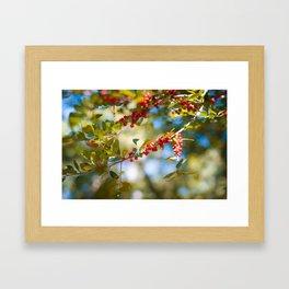 Fall bloom Framed Art Print
