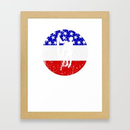 American Flag Harp Framed Art Print