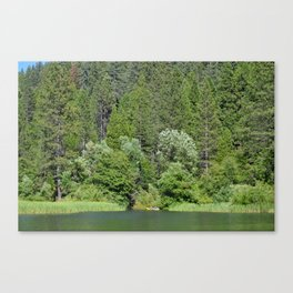one kayak in the green Canvas Print