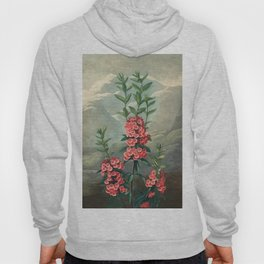Pink Floral The Narrow-leaved Kalmia : Temple of Flora Hoody