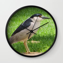 Black Crowned Night Heron in the Park Wall Clock