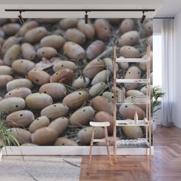 Acorns with Holes No.4 Wall Mural