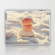 Sea Urchins Laptop & iPad Skin