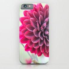 Burgundy Dawn Dahlia 2 Slim Case iPhone 6s