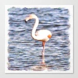 Just Like A Flamingo Canvas Print