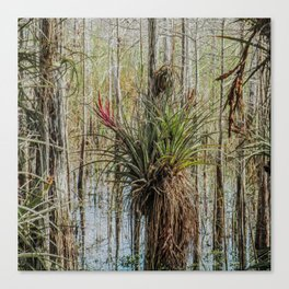 Unexpected Beauty Canvas Print