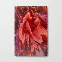 Scarlet Begonias Metal Print