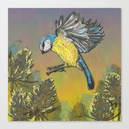 Blue Tit and Teasels Canvas Print
