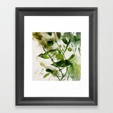 Birds (square 2) Framed Art Print