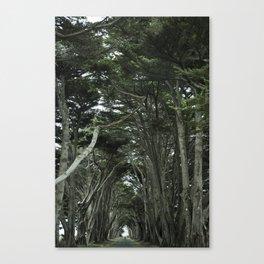 Point Reyes, CA Canvas Print