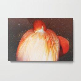 Flamingo Flame Flower Metal Print