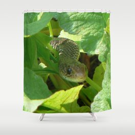 Radish snake..... Shower Curtain