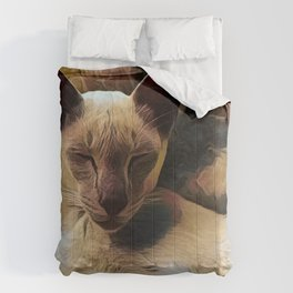 Cozy Cat Comforters