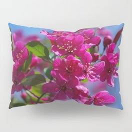 Rosy spring crabapple blossoms - Malus 'Prairifire' Pillow Sham