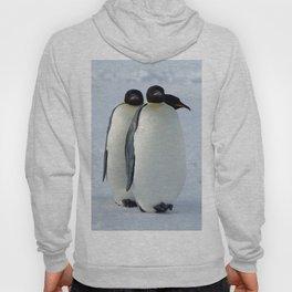 Emperor Penguins Huddled Hoody