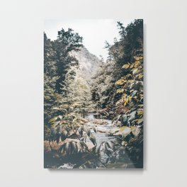 Tallulah Gorge Metal Print