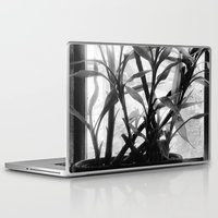 bamboo Laptop & iPad Skins featuring Bamboo by Lindzey42