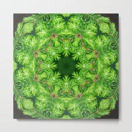 Spring green Canadian Hemlock mandala Metal Print