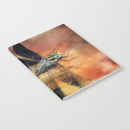 Night Light Of The Dragonfly Notebook