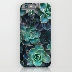 Succulent Blue Green Plants iPhone 6s Slim Case