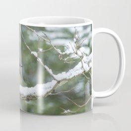 Male Varied Thrush, No. 2 Coffee Mug