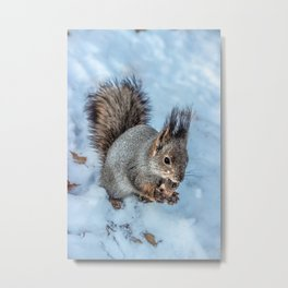 Ice age- the happy end Metal Print
