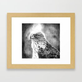 Tale of an Eyas Framed Art Print