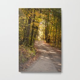 The Road Less Traveled (New England Fall) Metal Print