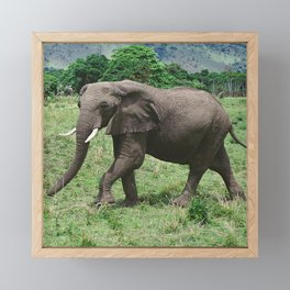 Moments Before the Elephant Charged Us Framed Mini Art Print
