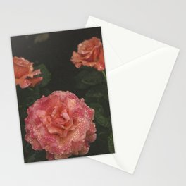 Beauty Everywhere Stationery Cards