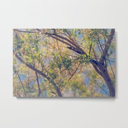 Spring Treetops Metal Print