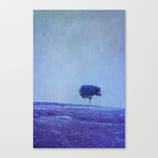 the dreaming tree Canvas Print