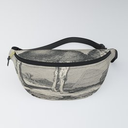 A dromedary standing in an exotic landscape. Etching. Fanny Pack