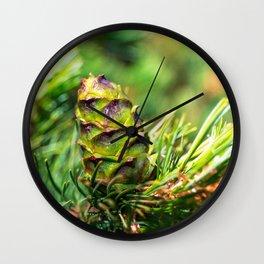 Dwarf cone Wall Clock