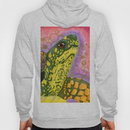 Spirit Turtle Hoody