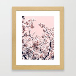 Pink Spring Flowers Framed Art Print