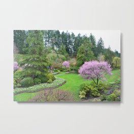 A botanical garden in spring time. Pink flowering trees, and green plants landscape. Metal Print