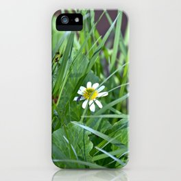 Lake Irene Alpine Floral Study 5 iPhone Case