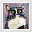 Big eyed tuxedo cat by marlenewatson