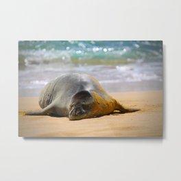 sleepy seal Metal Print