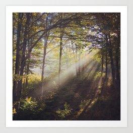 Canaan Valley Light Art Print