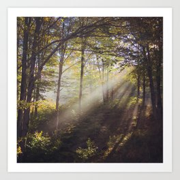 Canaan Valley Light Art Print