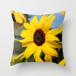 Sunflowers in the golden Hour Throw Pillow