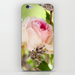 Roses and lavender iPhone Skin