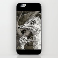 Ostriches G024 iPhone & iPod Skin
