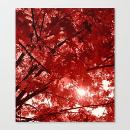 Ruby Fall Canvas Print