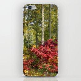 Autumn Arboretum iPhone Skin
