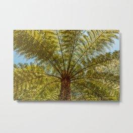 Tree Fern Metal Print